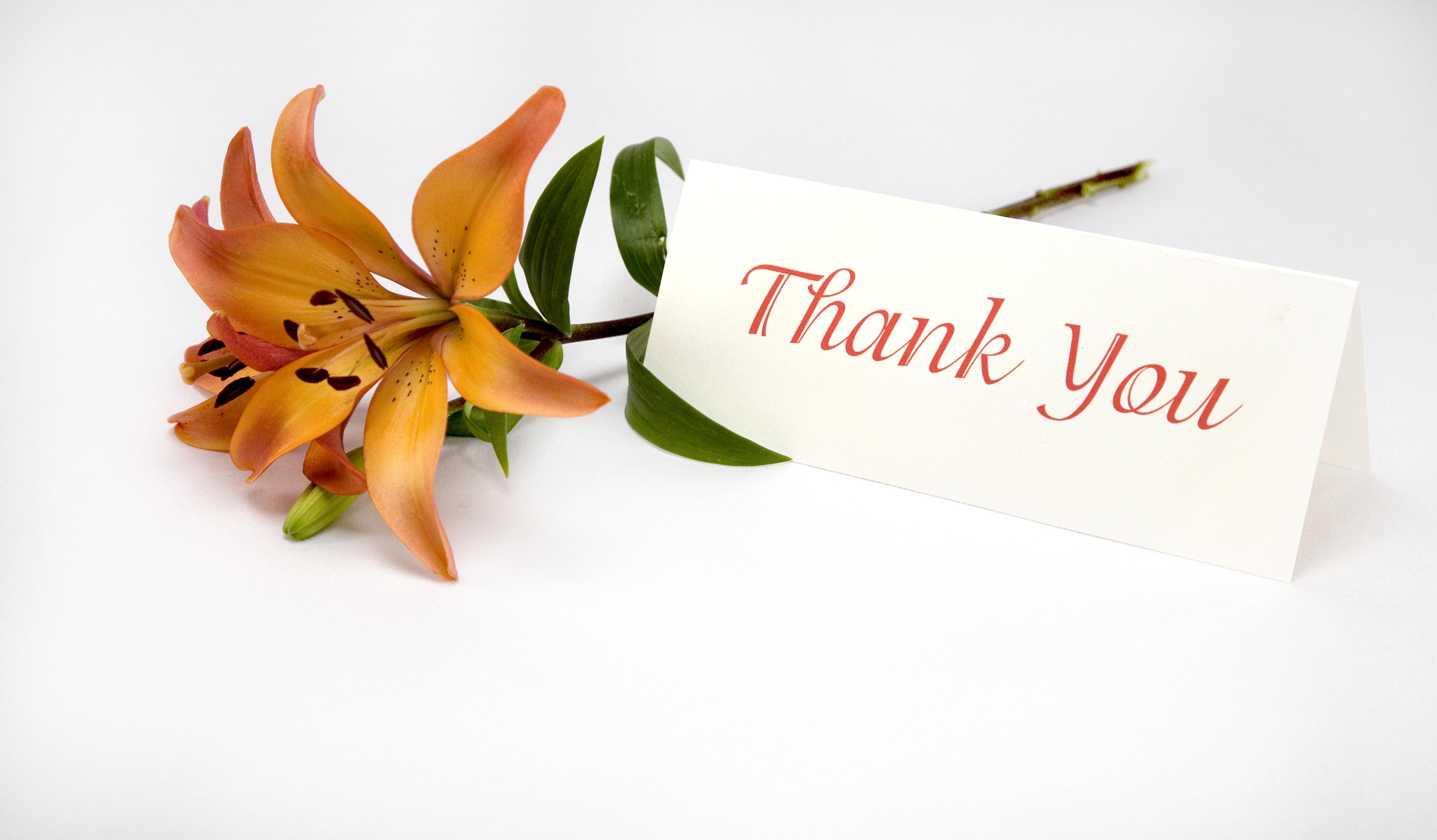 Give thanks author april mcgowan